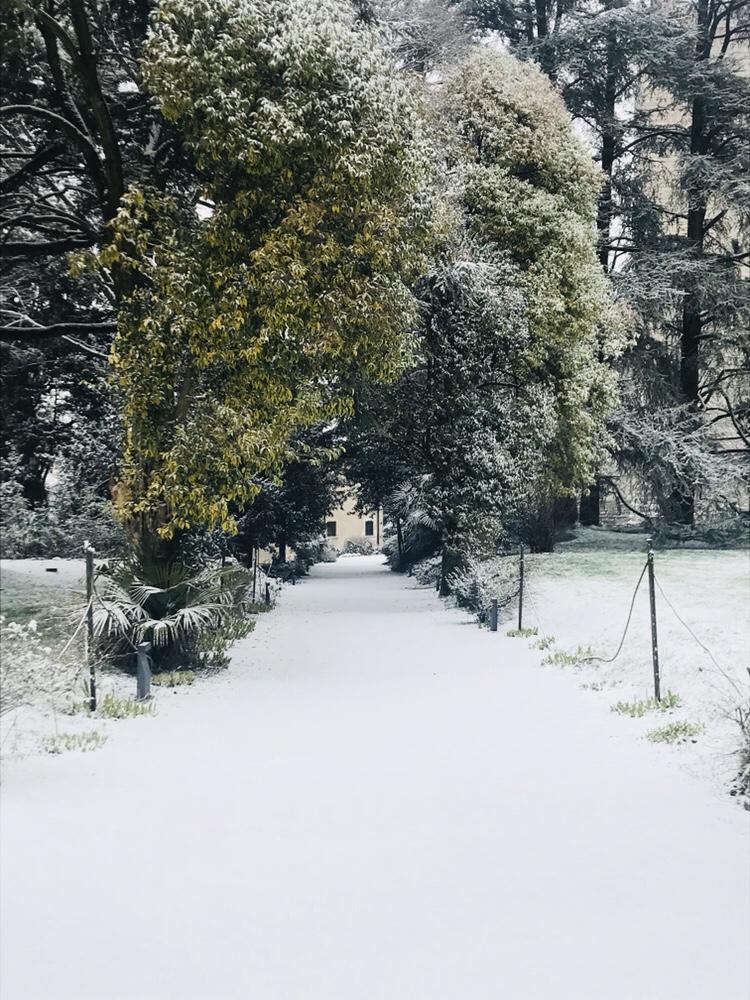 Neve….